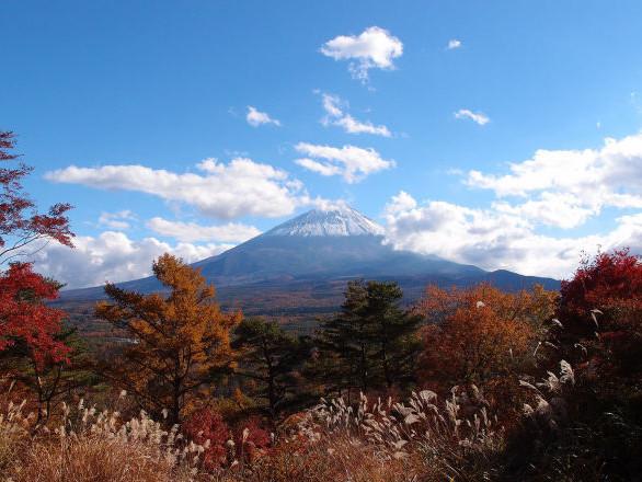 Japon: un château classé au Patrimoine mondial ravagé par les flammes - vidéos