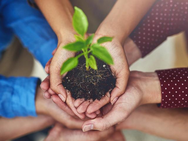 5 start-up environnementales marocaines dans le vent
