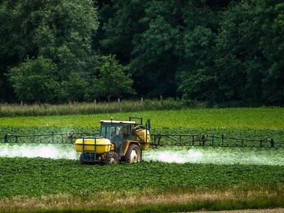 """Condamnation de Monsanto : EELV appelle le gouvernement à """"cesser de tergiverser"""" sur le glyphosate"""
