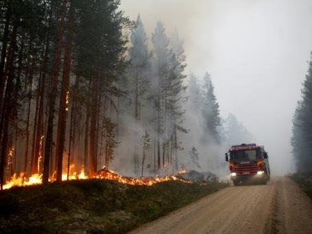 """Risque """"extrême"""" de nouveaux feux de forêt en Suède, l'Europe du Nord suffoque"""