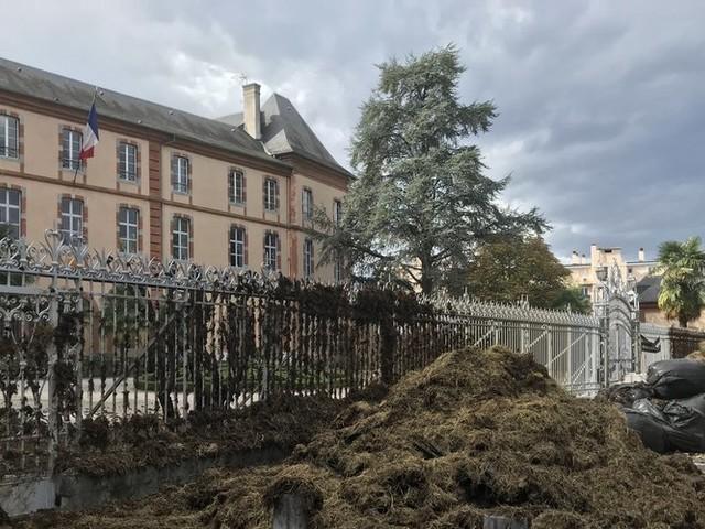 Ours : les agriculteurs pyrénéens déversent leur colère devant la préfecture de Tarbes