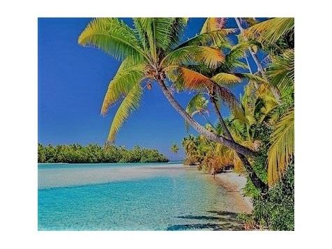 Atolls du Pacifique : la grande supercherie des écolos