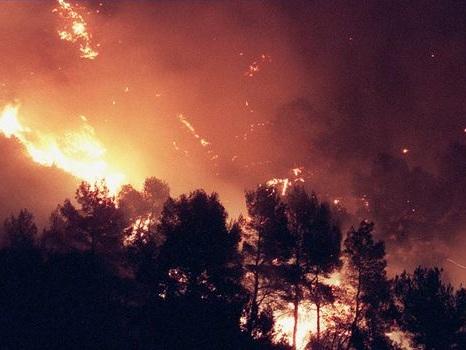 Environ 400 ha de pinèdes détruits par un feu en cours près de Carcassonne