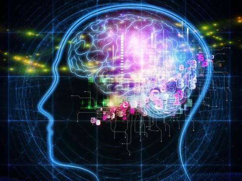 Intelligence artificielle : Après, les voitures électriques et le projet SpaceX, Elon Musk révèle ses plans pour un cerveau mi humain-mi ordinateur