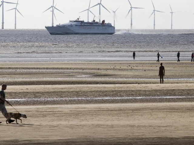 Les parcs éoliens offshore belges coûtent (trop) cher aux consommateurs