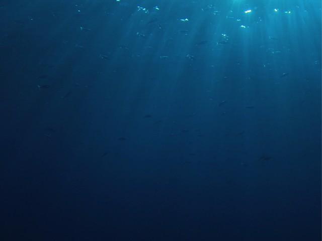 OCETRA : L'expert réunionnais des travaux en mer jette l'ancre à Maurice