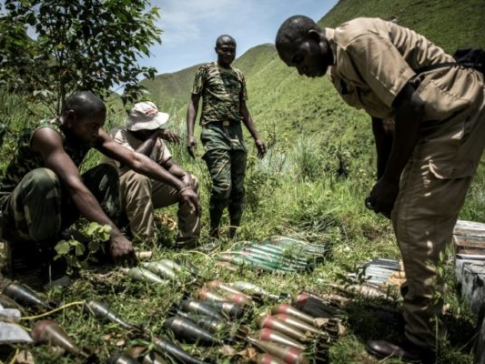 RDC: l'armée affirme poursuivre son offensive contre des rebelles hutus rwandais