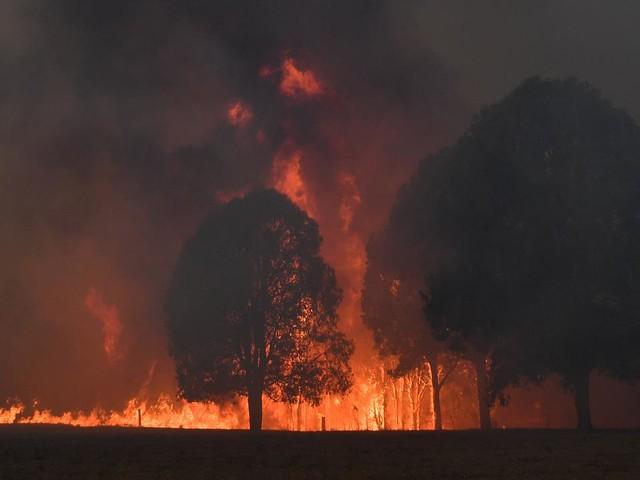 Australie : la pluie tombe enfin sur les incendies