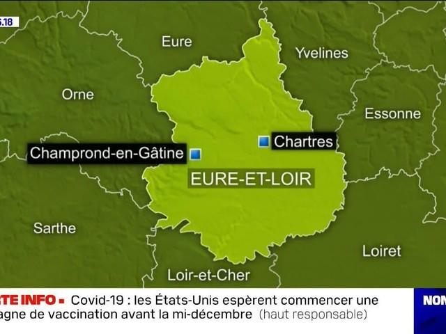Un élevage de visons contaminé au Covid-19 en France, les 1000 bêtes abattues