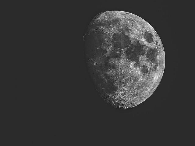 Finalement, le milliardaire japonais ne cherche plus de petite amie pour aller sur la Lune