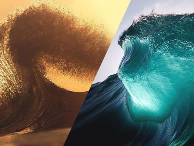 24 photographies qui illustrent toute la grâce et la puissance des océans