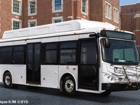 130 bus électriques BYD pour Los Angeles