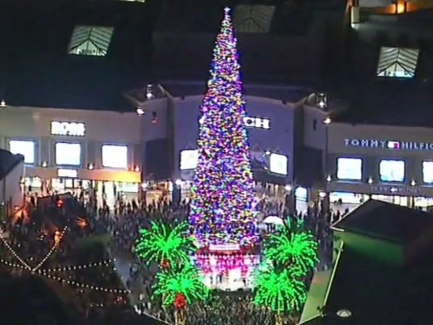 Le plus grand sapin de Noël naturel vient d'être installé en Californie (et rassurez vous, il ne brulera pas)
