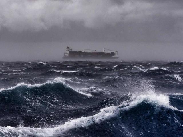 Dangers sur la mer Méditerranée: La WWF tire la sonnette d'alarme