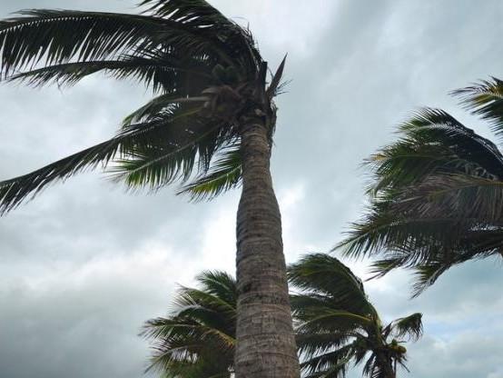 Maria/catastrophe naturelle : « Personne ne sera oublié », a assuré Girardin