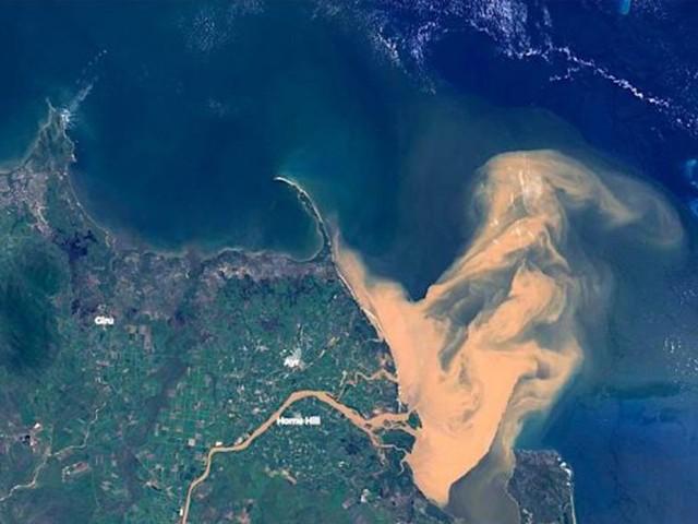 Catastrophe écologique : la Grande barrière de corail souillée par une masse d'eau polluée