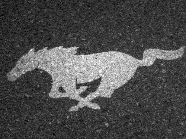 La Ford Mustang SUV présentée en novembre ?