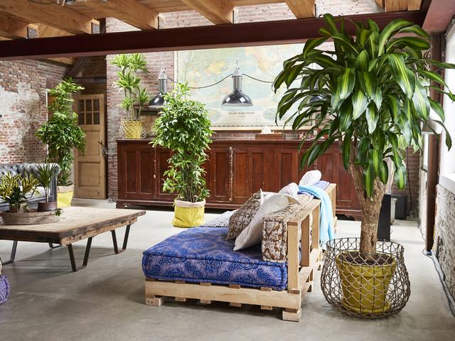 Zoom sur une plante résolument exotique : le Dracaena