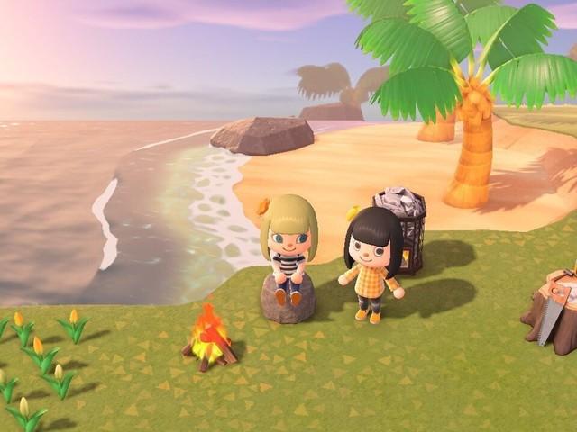 """En plein confinement, le jeu vidéo """"Animal crossing"""" est une source de réconfort"""