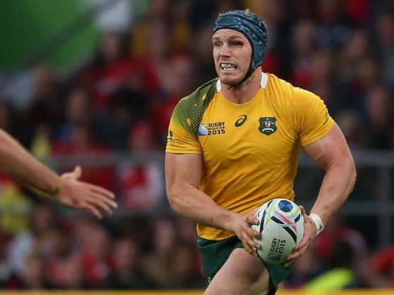 Rugby - Super Rugby - Le 3e ligne australien David Pocock opéré, retour prévu pour la mi-mars