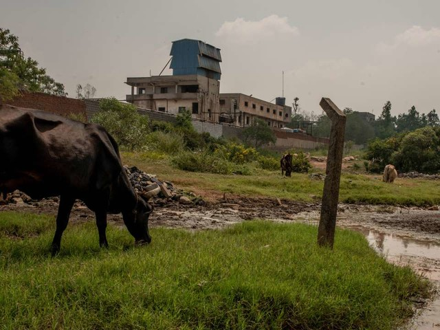 Enquête sur les usines d'antibiotiques indiennes, fabriques d'antibiorésistance