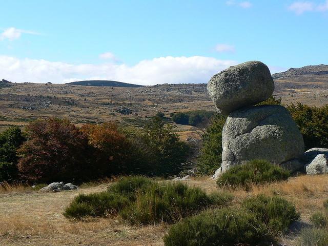 Dans le Gard et en Lozère, le parc national des Cévennes propose plus de 100 activités pendant tout l'été