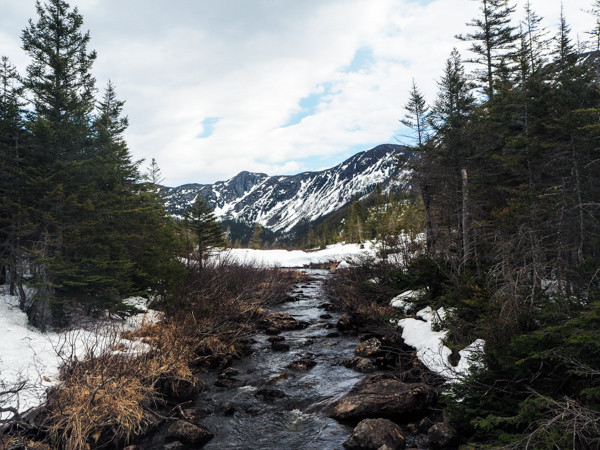 Voyager au Canada hors saison et vivre le printemps au Canada
