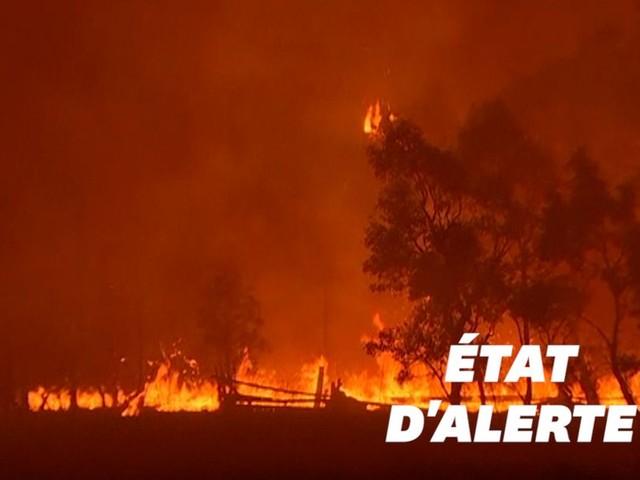 Les incendies en Australie gagnent Canberra placée en état d'alerte