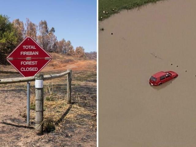 Tempêtes de poussière et averses de grêle sur l'Australie sinistrée, des espèces menacées durement frappées par les feux