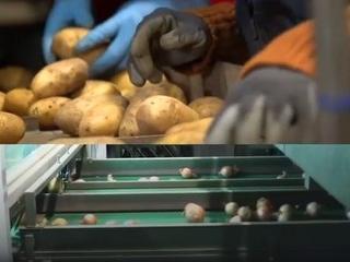 Fibre : la ferme de la Motte s'est développée avec l'aide du plan France Relance