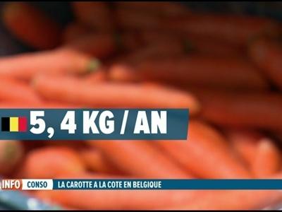 Focus sur la culture des carottes en Hesbaye