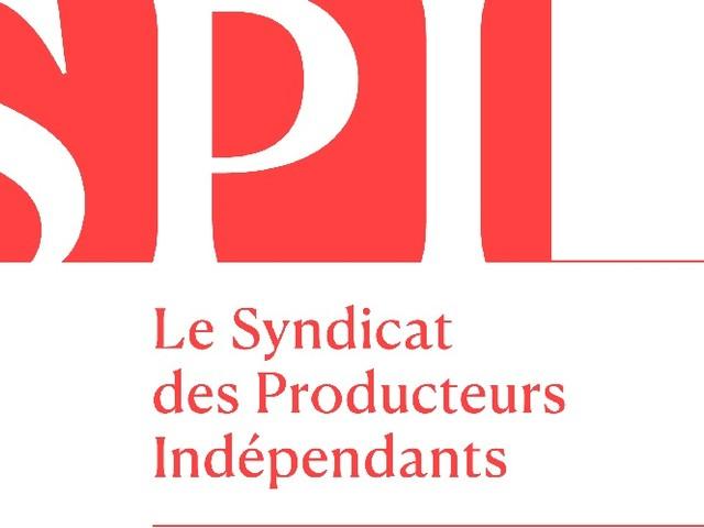 Loi audiovisuelle : les contre-propositions du SPI