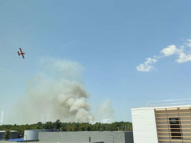 2,5 hectares partis en fumée à Saint-Médard-en-Jalles, près de Bordeaux