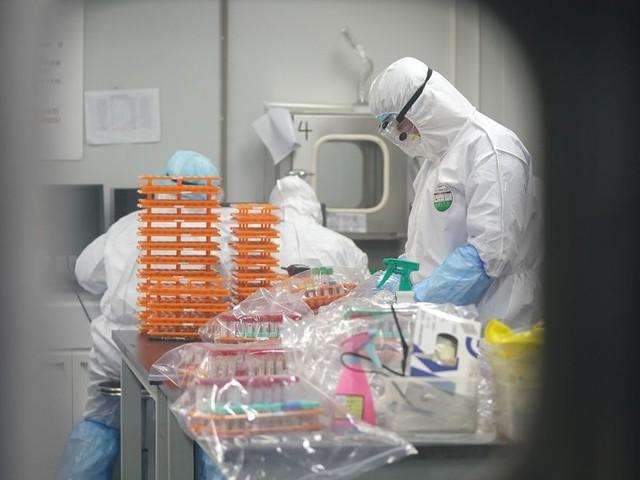 Coronavirus: plus d'un quart des Français pensent que le virus a été créé en laboratoire