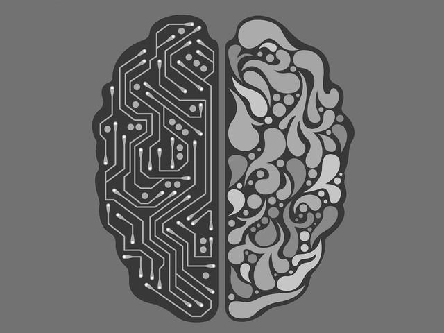 Une étude montre que notre cerveau ne se repose jamais