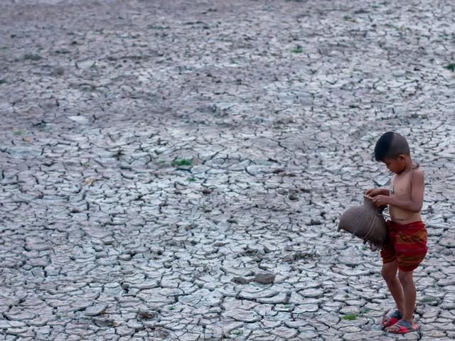 Face au réchauffement climatique, à quoi ressemblerait la vie d'un enfant né en 2019