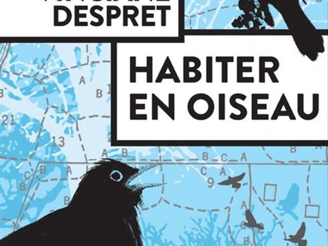 L'oiseau, miroir de nos obsessions