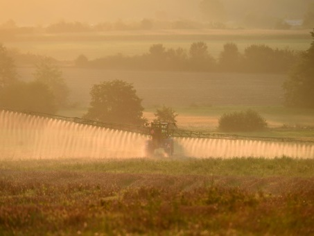 Supprimer le glyphosate aura un coût élevé, estime un rapport parlementaire