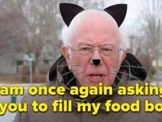 La guerre des mèmes: comment les candidats à la présidentielle américaine s'approprient l'humour internet