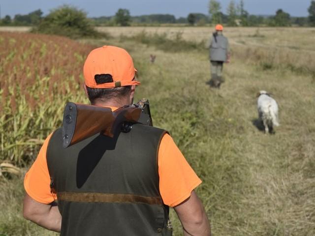 Un chasseur tué par un autre chasseur lors d'une battue aux sangliers en Ariège