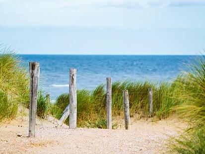 Cet été, prenez la direction de la plage en bus