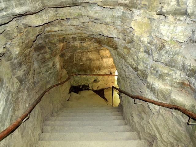 Et si vous investissiez dans une cave?