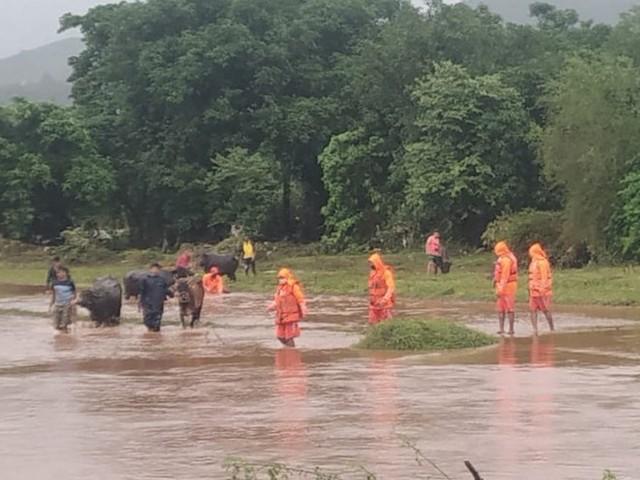 Pluies de mousson en Inde : au moins 76 morts et des dizaines de disparus