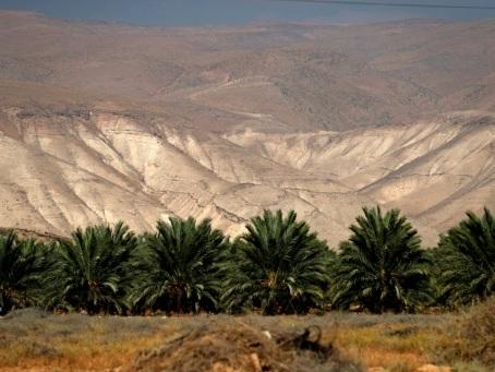 Dans la vallée du Jourdain, colons ravis et Palestiniens fatalistes