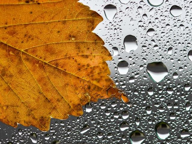 La météo de jeudi : la pluie s'installe sur les bords de la Méditerranée, perturbations ailleurs