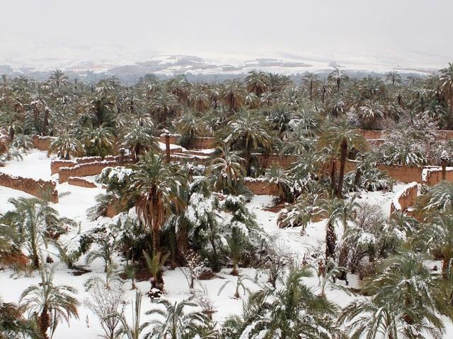 Chutes de neige et temps froid de vendredi à dimanche dans plusieurs régions du Maroc