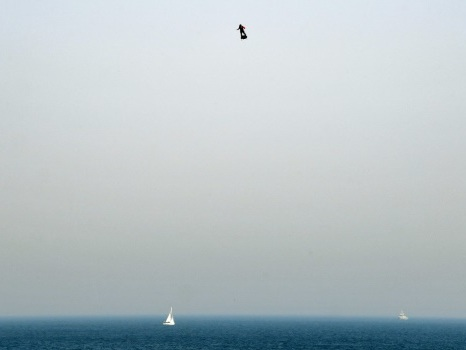 """L'homme volant"" Franky Zapata va retenter la traversée de la Manche ""en fin de semaine"""