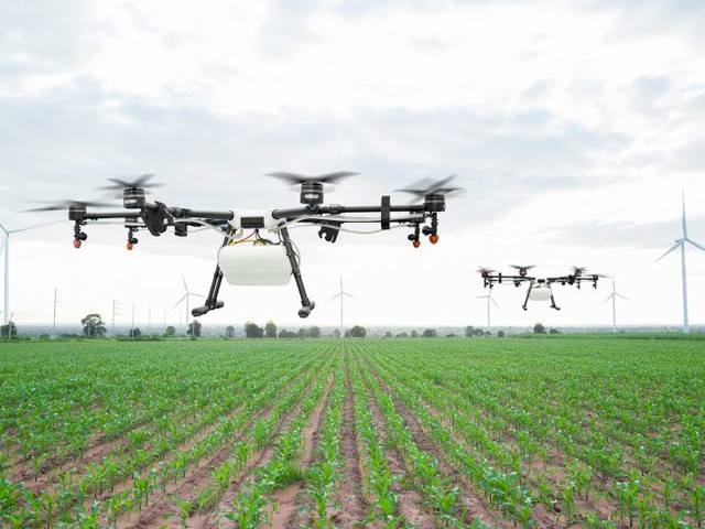 Conférence Launchpad Agritech : Le futur de l'agriculture au Maroc