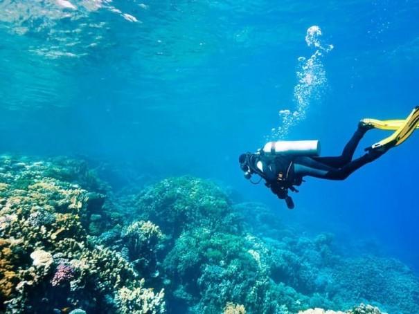 Tunisie: Décès d'un plongeur lors de l'extraction d'un bateau naufragé à Mahdia