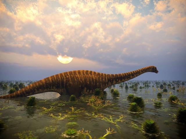 Au sanctuaire des dinosaures, à Angeac, des paléontologues découvrent un énorme fémur